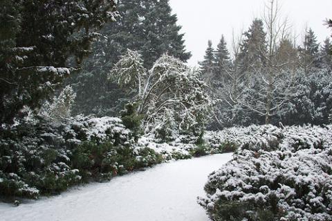 ucrania-nevadas.jpg