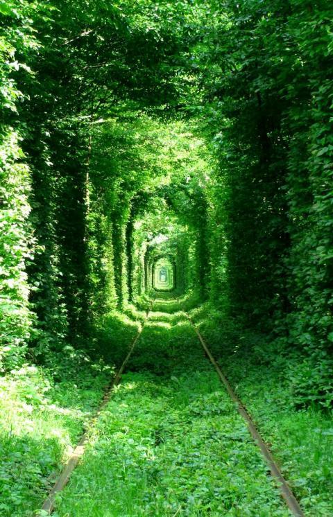 tunel-amor.jpg